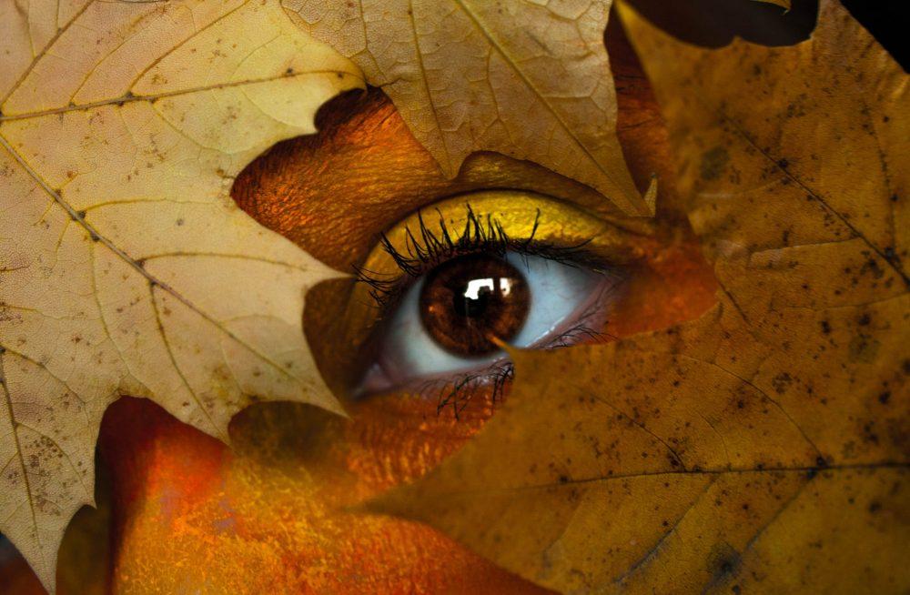 Ноември и зодиите