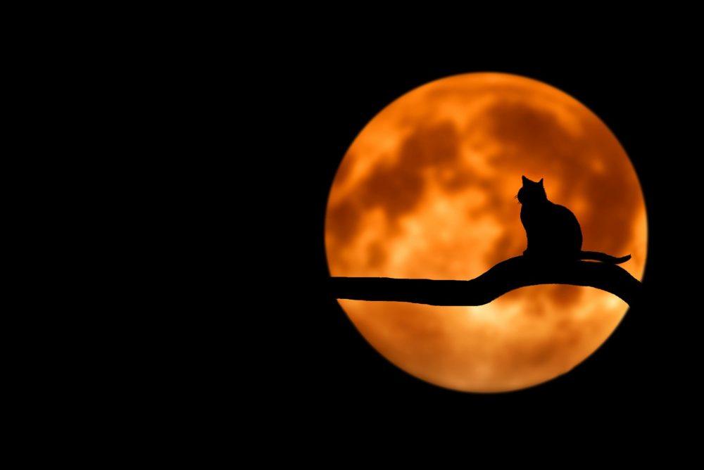мантри на лунното затъмнение