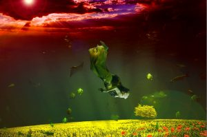 Венера в Риби